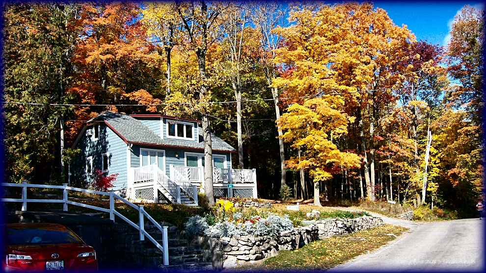 Cottage in late fall